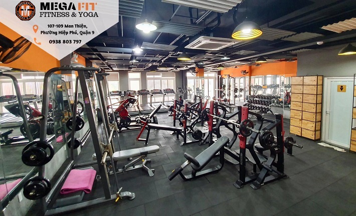 MegaFit Fitness & Yoga - Quận 9