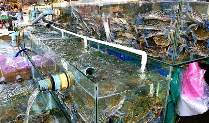 Vựa hải sản Thủ Đức