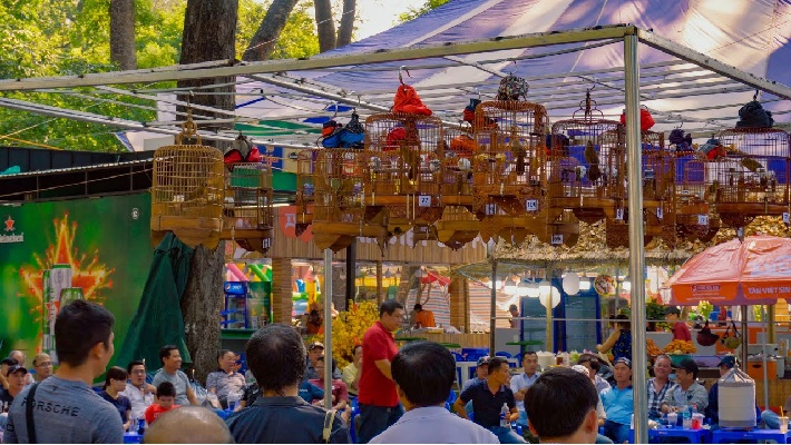 Top 5 cửa hàng bán chim cảnh đẹp và rẻ nhất TPHCM - Chim cảnh chợ Tao Đàn