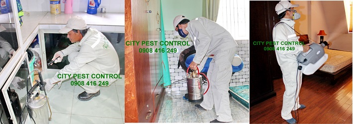 Công Ty TNHH CITY PEST CONTROL