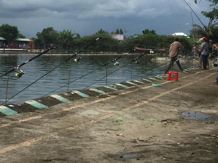 Địa điểm câu cá Hàng Tre