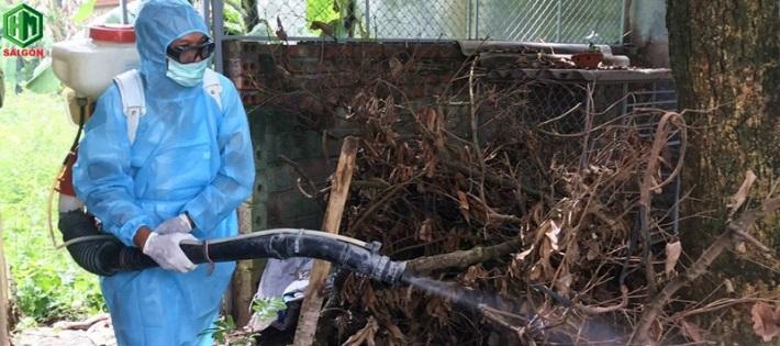 Công ty diệt côn trùng - Trừ mối Hoàn Mỹ