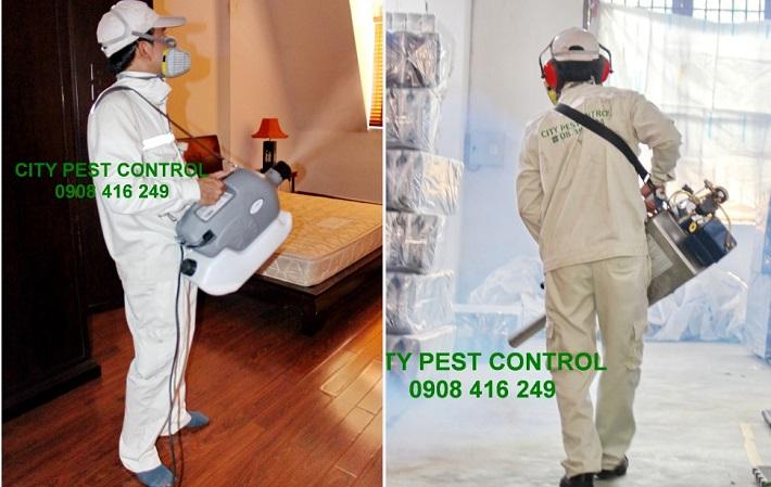 Công Ty diệt muỗi - Công Ty CITY PEST CONTROL | Nguồn từ trang citypest.vn