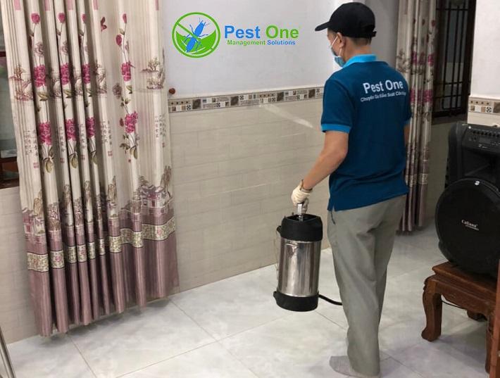 Công Ty dịch vụ diệt côn trùng Pest one | Nguồn từ trang Pestone.vn