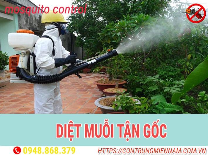 Công Ty diệt muỗi - Diệt Côn trùng Thái Dương | Nguồn từ trang contrungmiennam.com.vn