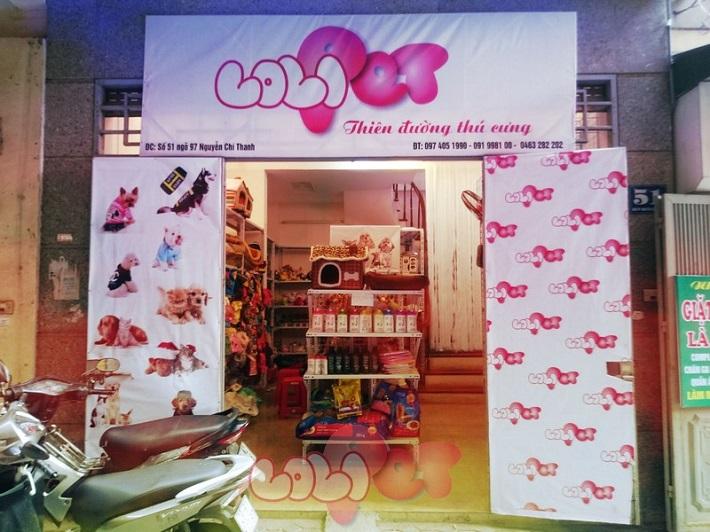 Shop bán mèo cảnh TPHCM - Lolipet | Nguồn từ trang dogparadise.vn